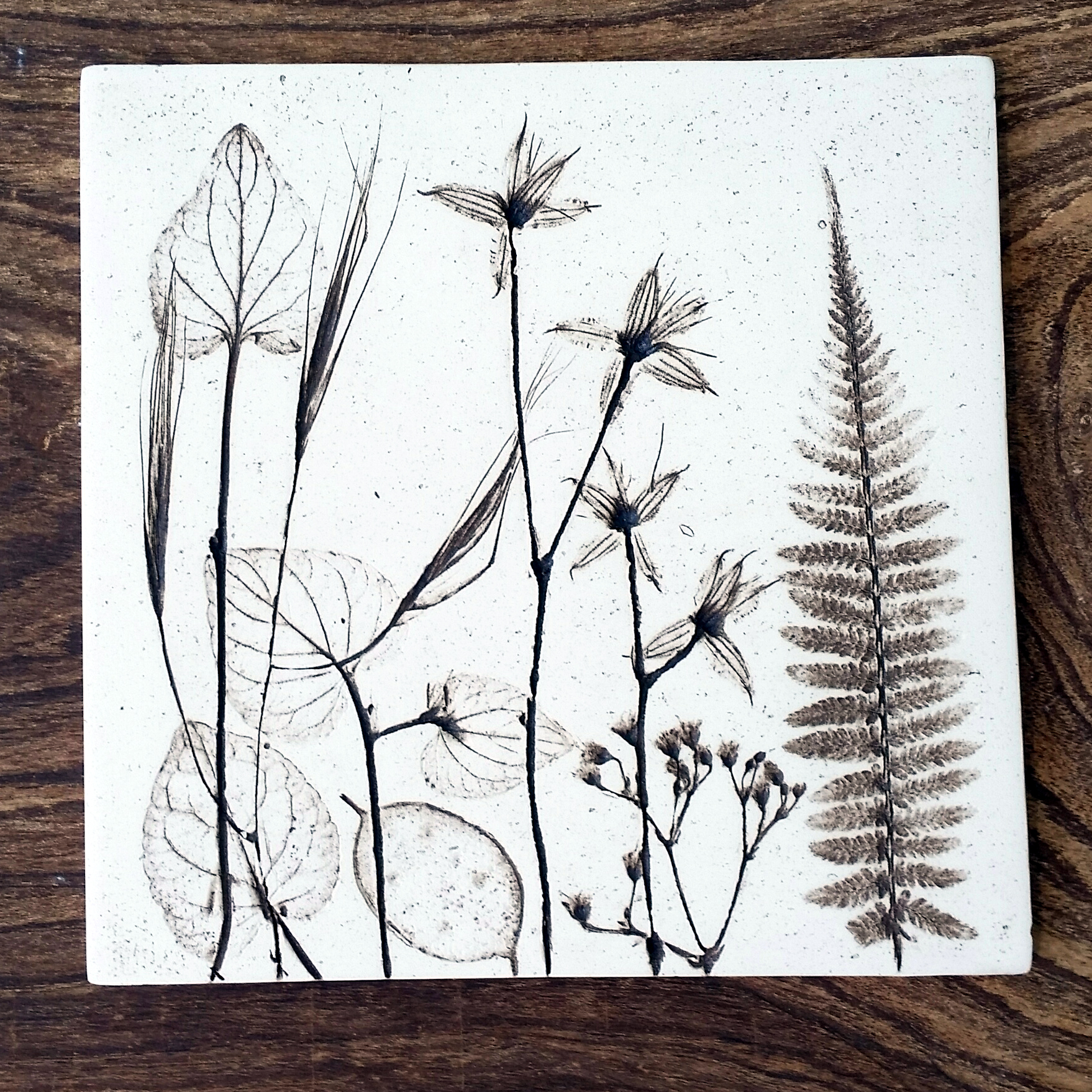 15 cm square natural flora and fauna tile.