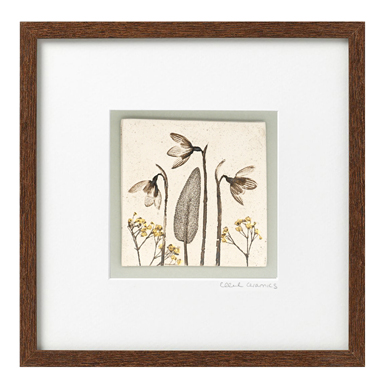 Dark Framed Botanical Tiles
