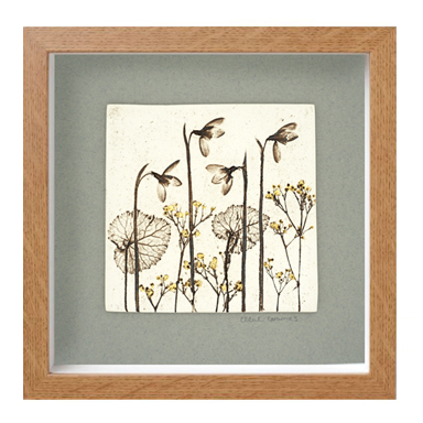 Box Framed Botanical Tiles